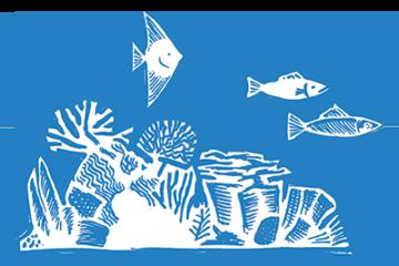 Ocean Wildlife Project