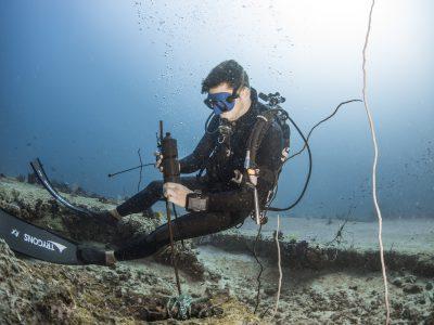 Ocean-Wildlife-Project-Meeresschutz-Ozeanschutz-Haischutz-Meer-Ozean-Wildtiere-Naturschutz-Spenden-schützen-forschen-Haiforschung.jpg1 copy